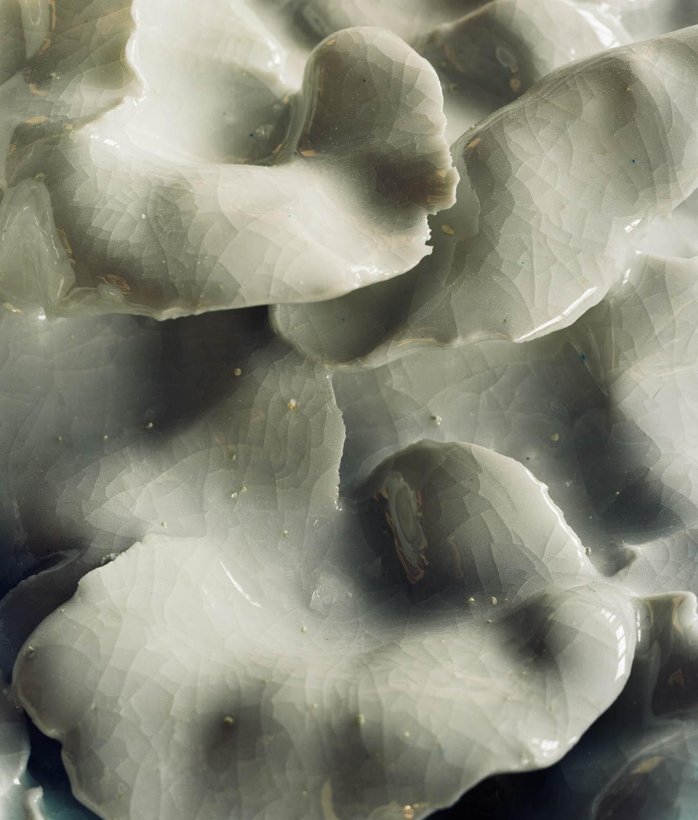 Glaserade keramikblad, detalj. Renata Francescon, Fruset šögonblick.