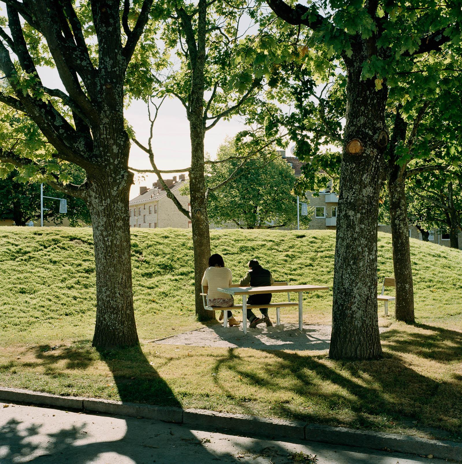 Sittgrupp bland träden vid en kulle. Love and devotion, helhetsgestaltning av Olaus Petri-skolan