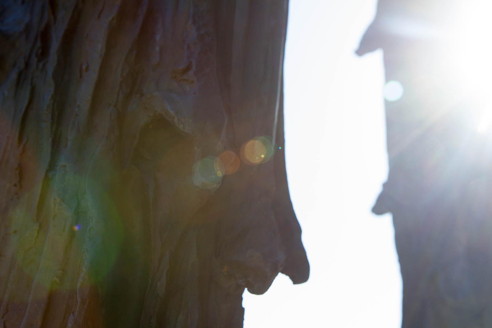 Bronsskulptur, detalj. Carl Boutard, Into The Wild (2013)