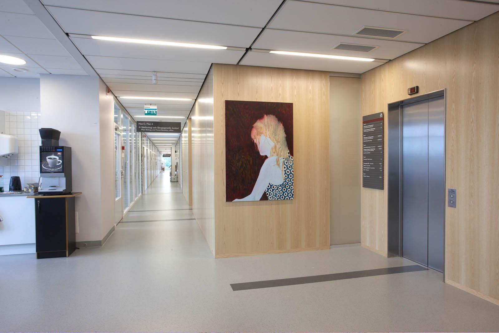Tavla på trävägg bredvid en hiss, av en bortvänd kvinna med ljust hår och prickig klänning. Robert Lucander, 13 målningar