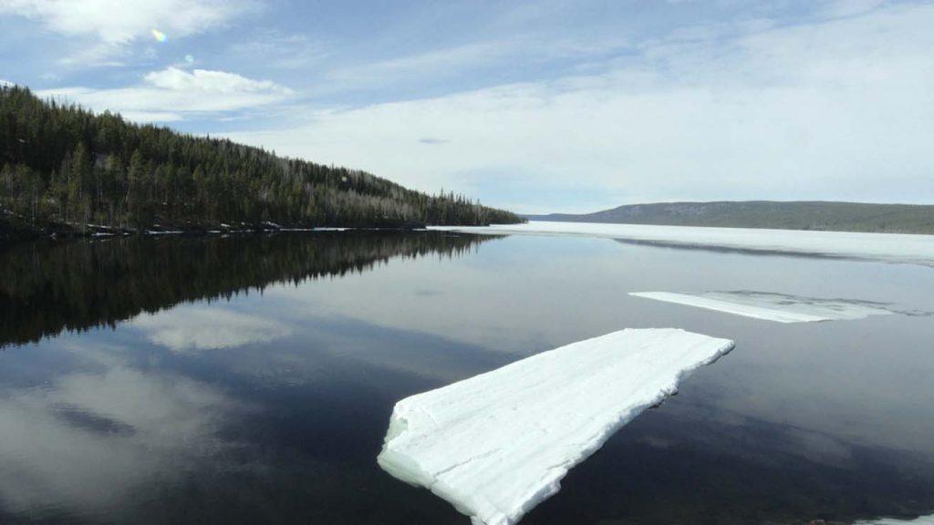 Stillbild ur verket. Isflak flyter på ett mörkt vatten. I bakgrunden skog.