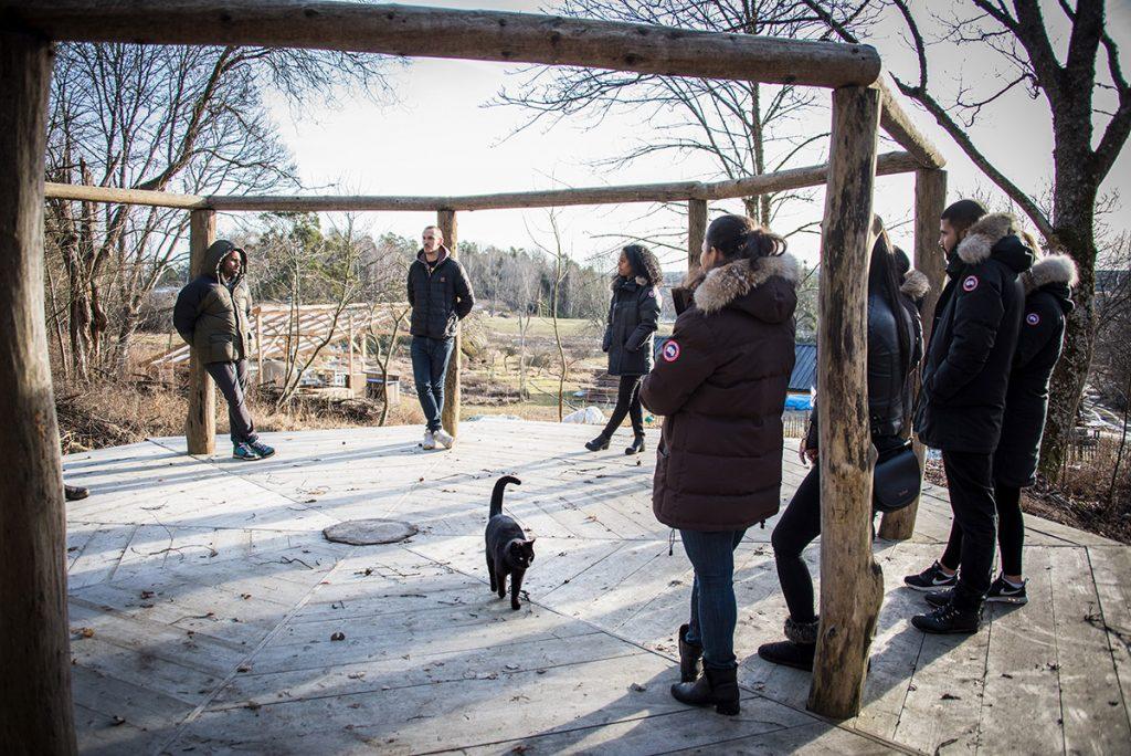 En grupp i ytterkläder står utspridda på något som liknar en rund utomhusscen av trä. En katt passerar.