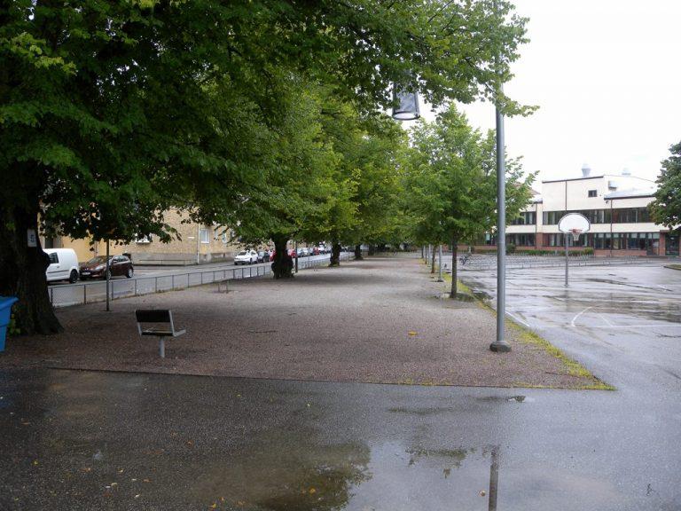 Skolgård där gröna träd står i långa rader.