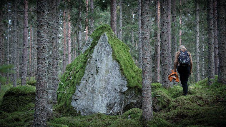 Stor mosstäckt sten i en skog