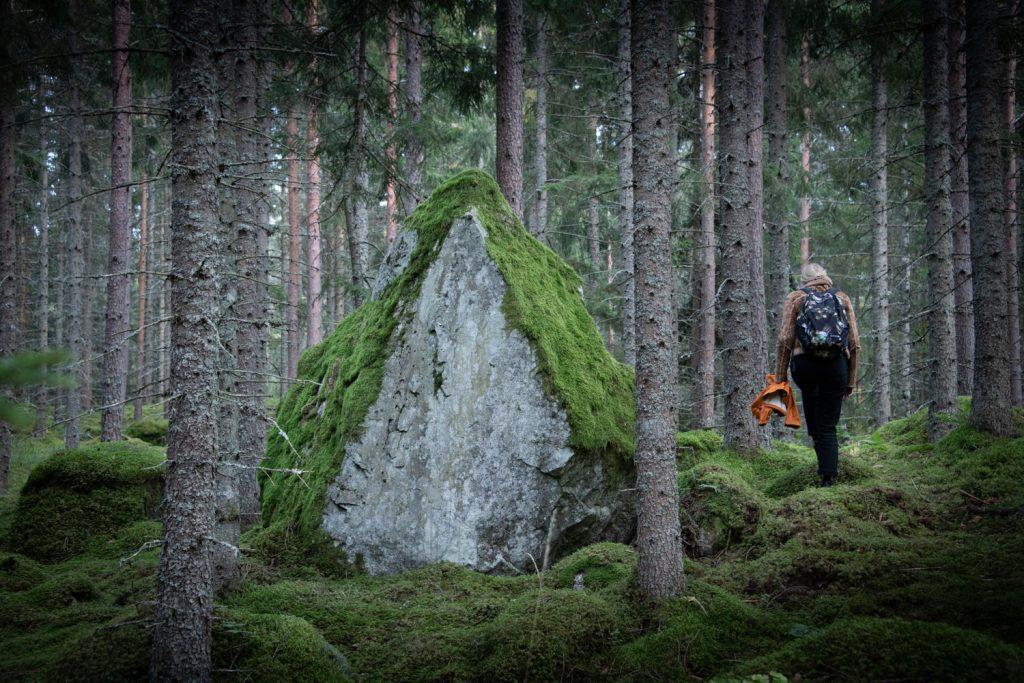En stor triangelformad sten med mossa på i en skog. En person går till höger om stenan