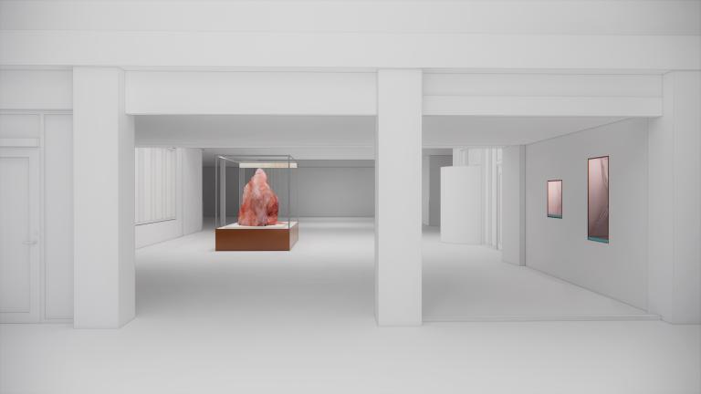 I ett rum finns inbyggda kabinett och en monter med en rosa, knoppformad, sten.